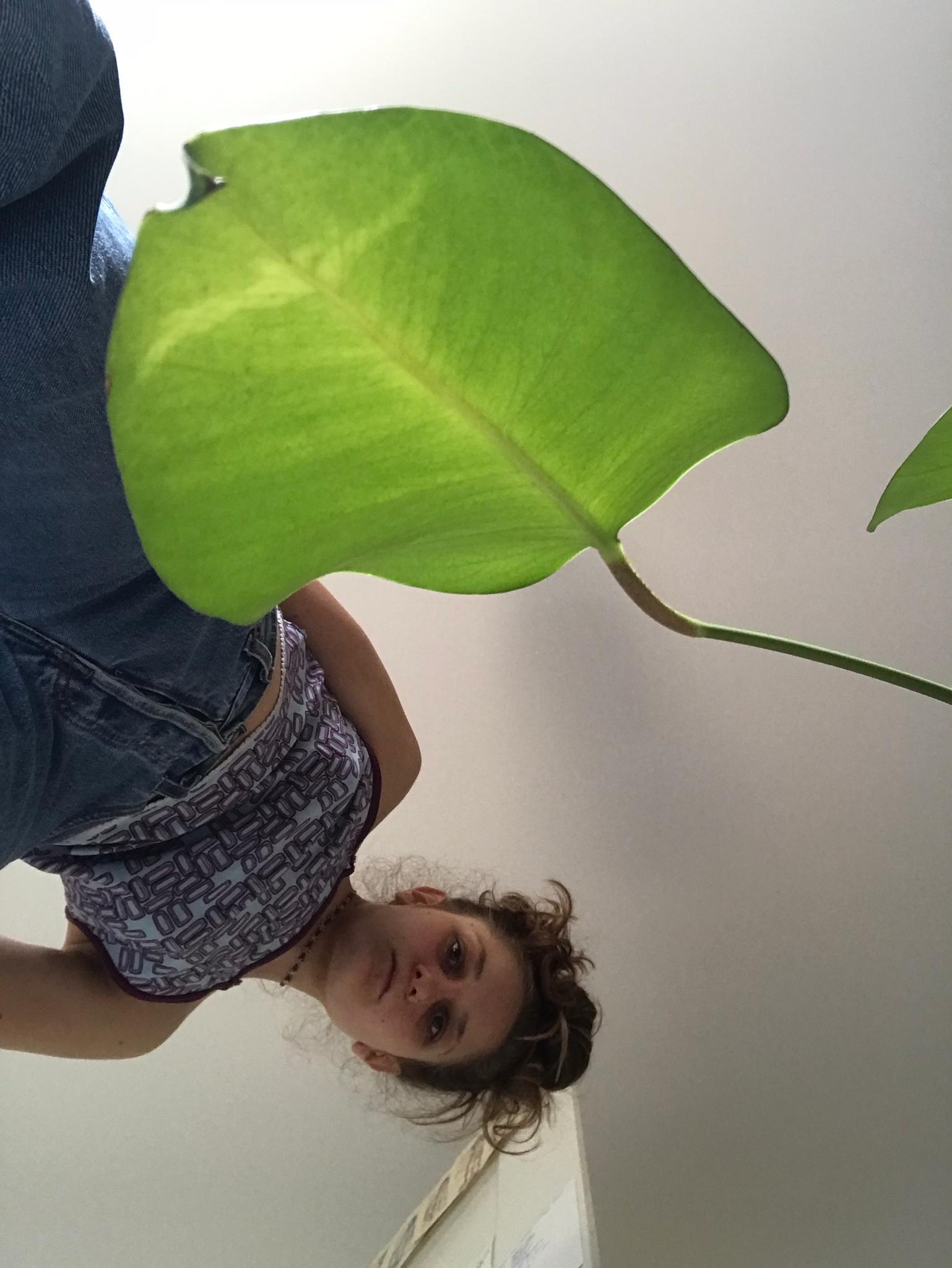 Profile picture Anouk Joana